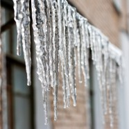Trending News Monday: Baby, it's cold outside